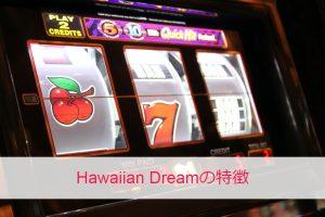 Hawaiian Dream(ハワイアンドリーム)の特徴